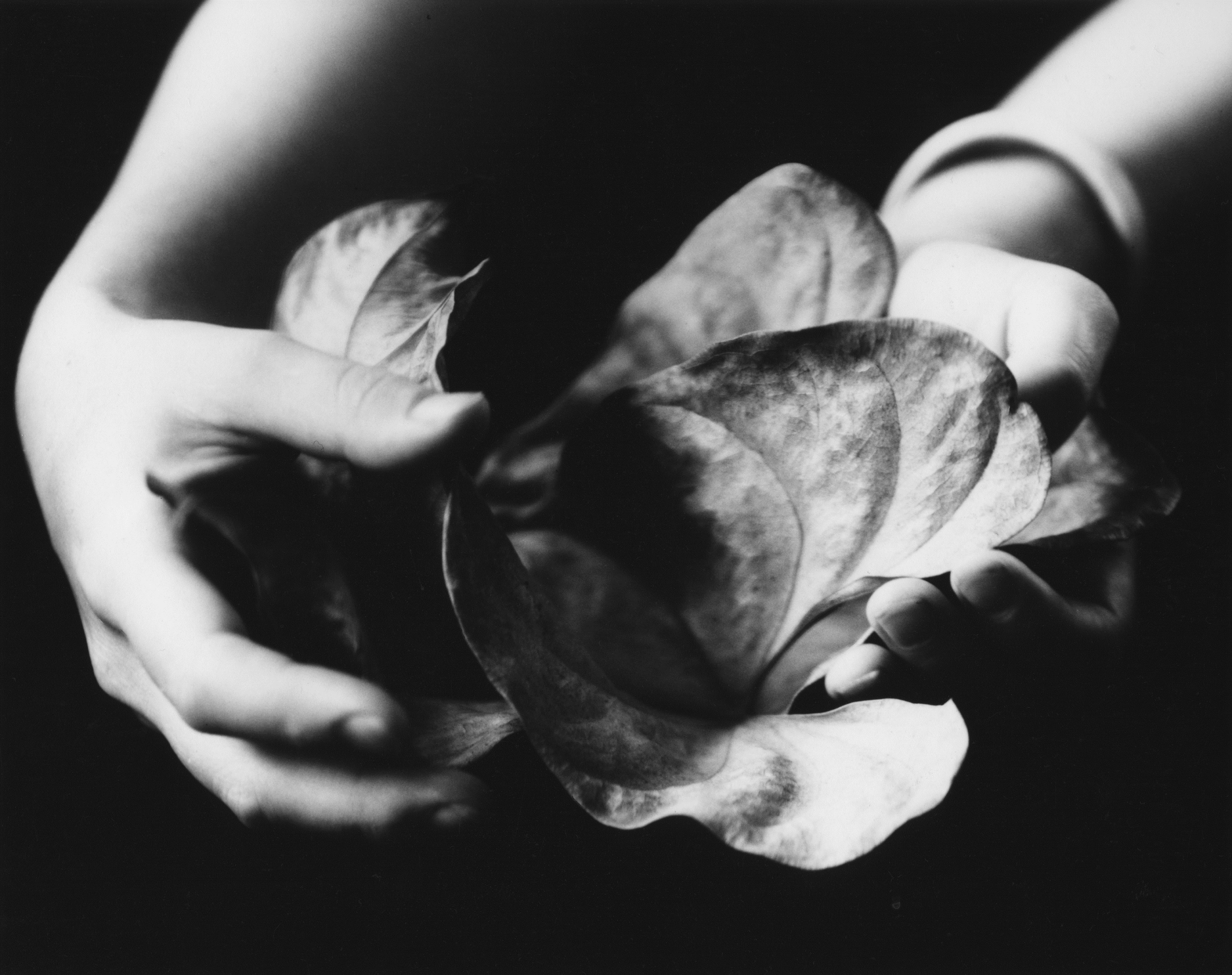 Walter Chappell, Senza Titolo, 1976 Stampa ai sali d'argento  © The Estate of Walter Chappell