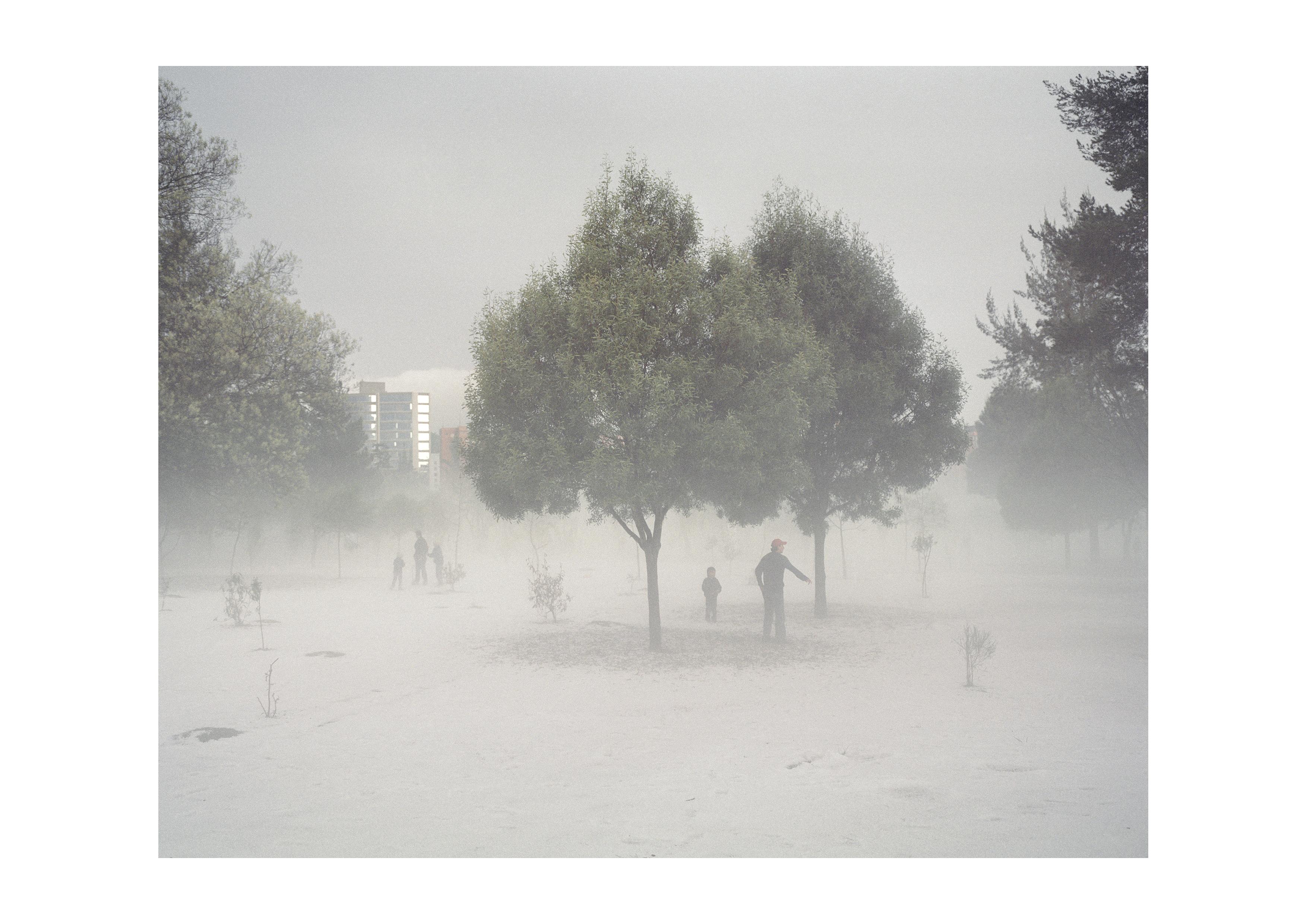 Dopo una rara grandinata nel Parco La Carolina, nella parte nord di Quito, la zona piu ricca della capitale dell'Ecuador. Novembre 2011.