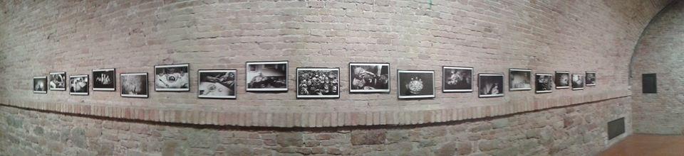 panoramica al socialphotofest ©pspf