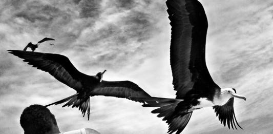 Paolo Marchetti vince Leica Photographers Award