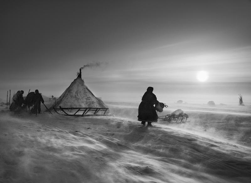 Penisola di Yamal, Siberia, 2011 © Sebastião Salgado/Amazonas Images