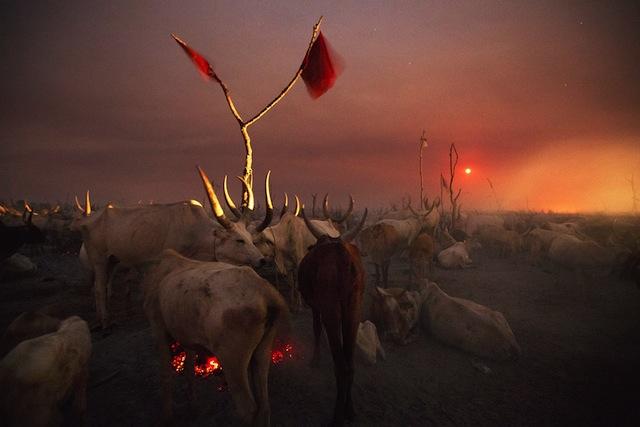 Nile_0005  Un accampamento di allevatori nella notte mentre sorge la luna piena Jonglei, Sudan del Sud 2012