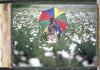 ruanda mostra officine fotografiche roma