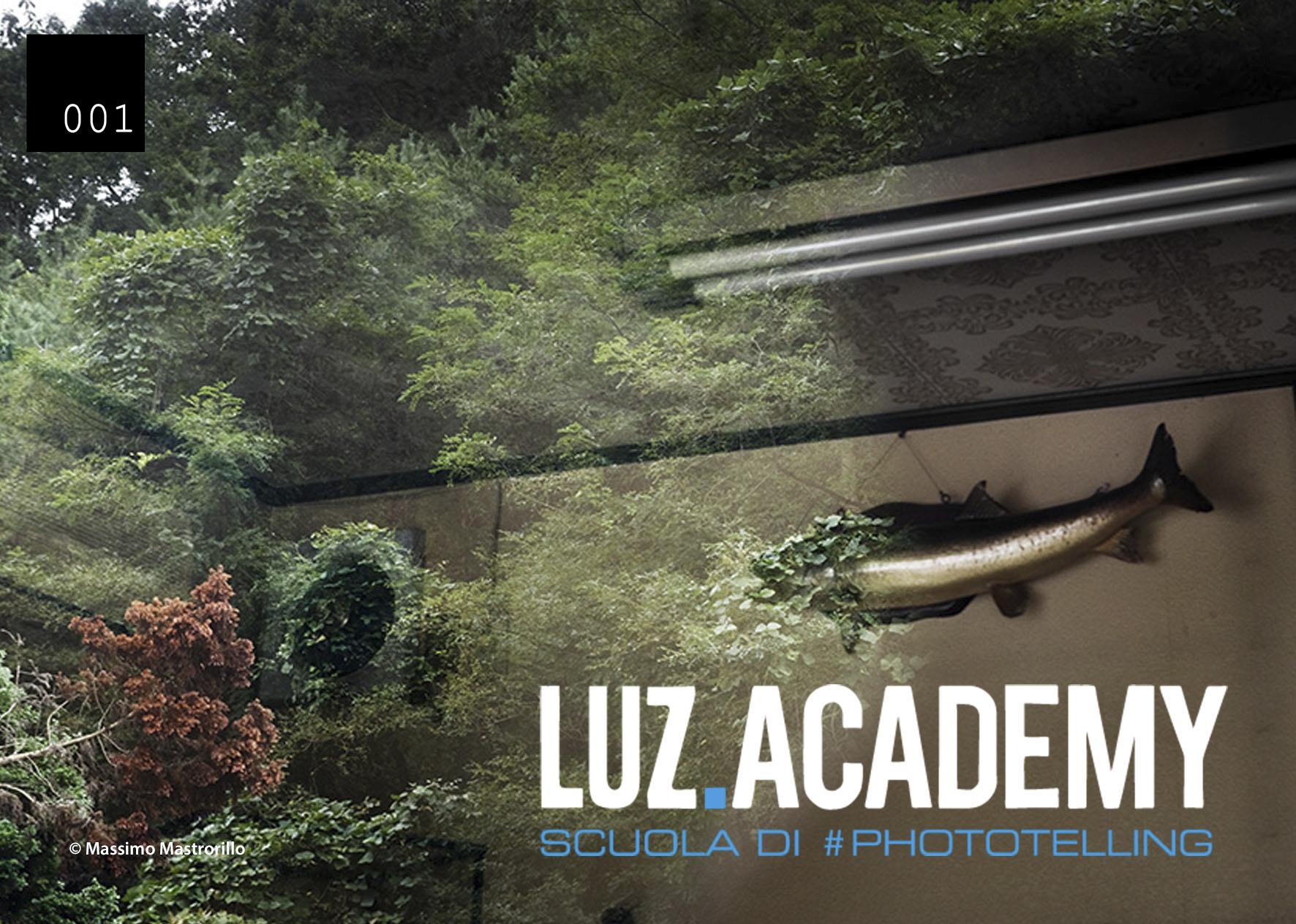 Luz Academy