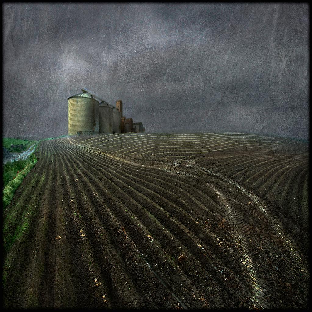 Weather dog- Christian Devers_1st Prize cat. Paesaggio Agricolo e Naturalistico 2013