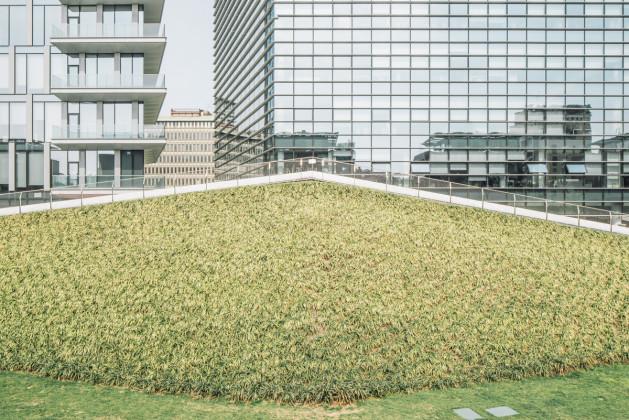 Verde Contemporaneo daniele cametti aspri