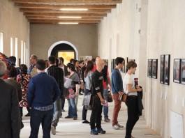 visite guidate gratuite alle mostre del festival di Fotografia Europea