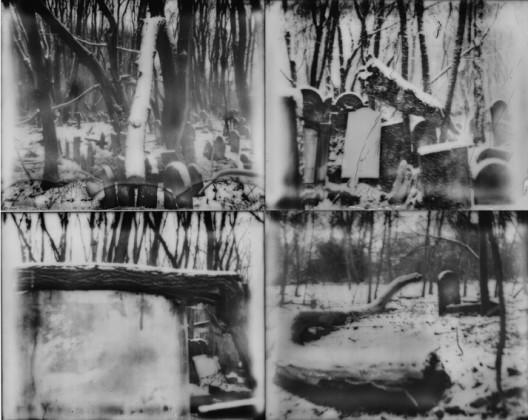 Michael Ackerman e castore mostra roma