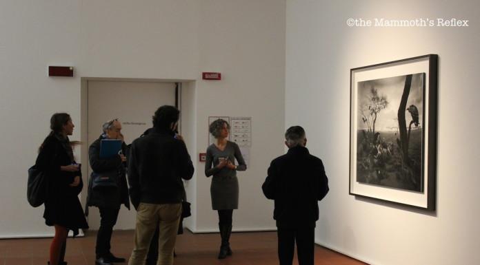 report mostra Hiroshi Sugimoto a Modena