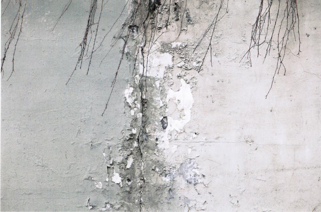 ©Abbas Kiarostami The wall 2, 2010 Stampa a getto di inchiostro su carta Fine Art Epson Cm 57.0x89.0