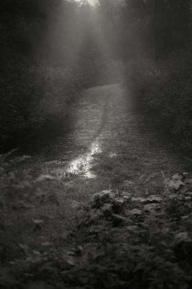 Delta del Po nelle fotografie di Marco Zanta