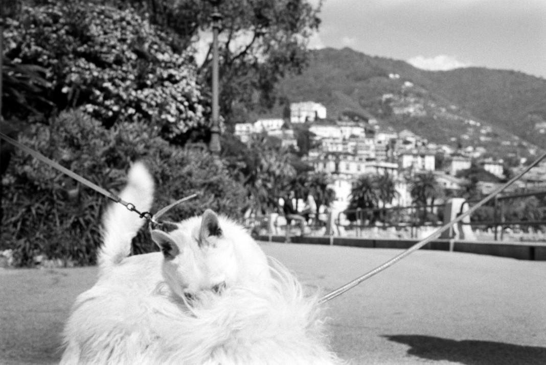 Italian Riviera gli scatti di Mark Cohen in mostra in liguria