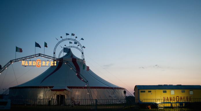Questo è il circo di Nando
