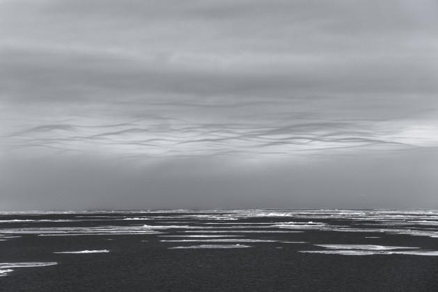 Il mondo incantato di Vincent Munier in mostra a Milano