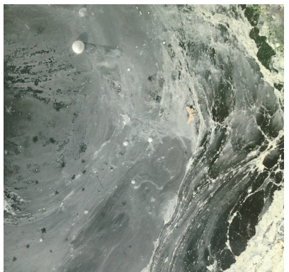Dead Sea Vittoria Mentasti progetto slideluck bologna