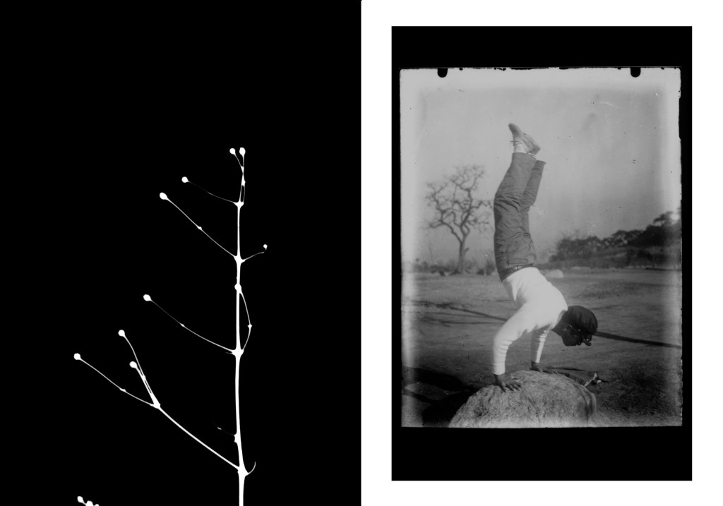 Martina della Valle, Wabi-Sabi #2, 2015, Silver gelatin contact print, Baryta paper mounted on D-bond, diptych, 18 x 24 cm each