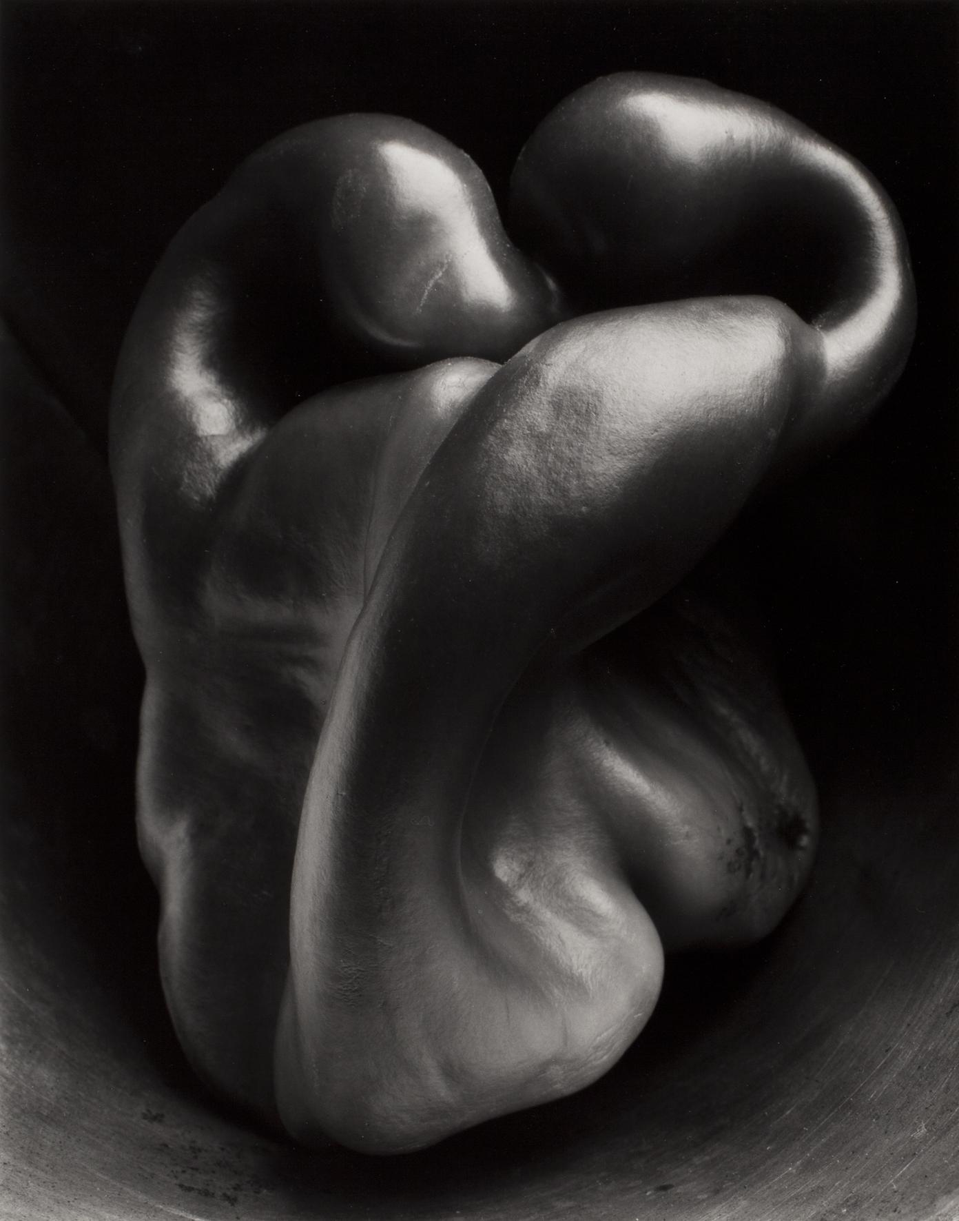 Edward Weston - Pepper no.30 , 1930 - stampa alla gelatina d'argento - © 1981 Center for Creartive Photography, Arizona board of Regents - Collezione Fondazione Cassa di Risparmio di Modena