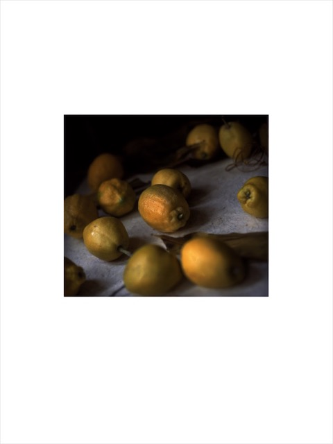 Lemons and pears. New York. July 2003.