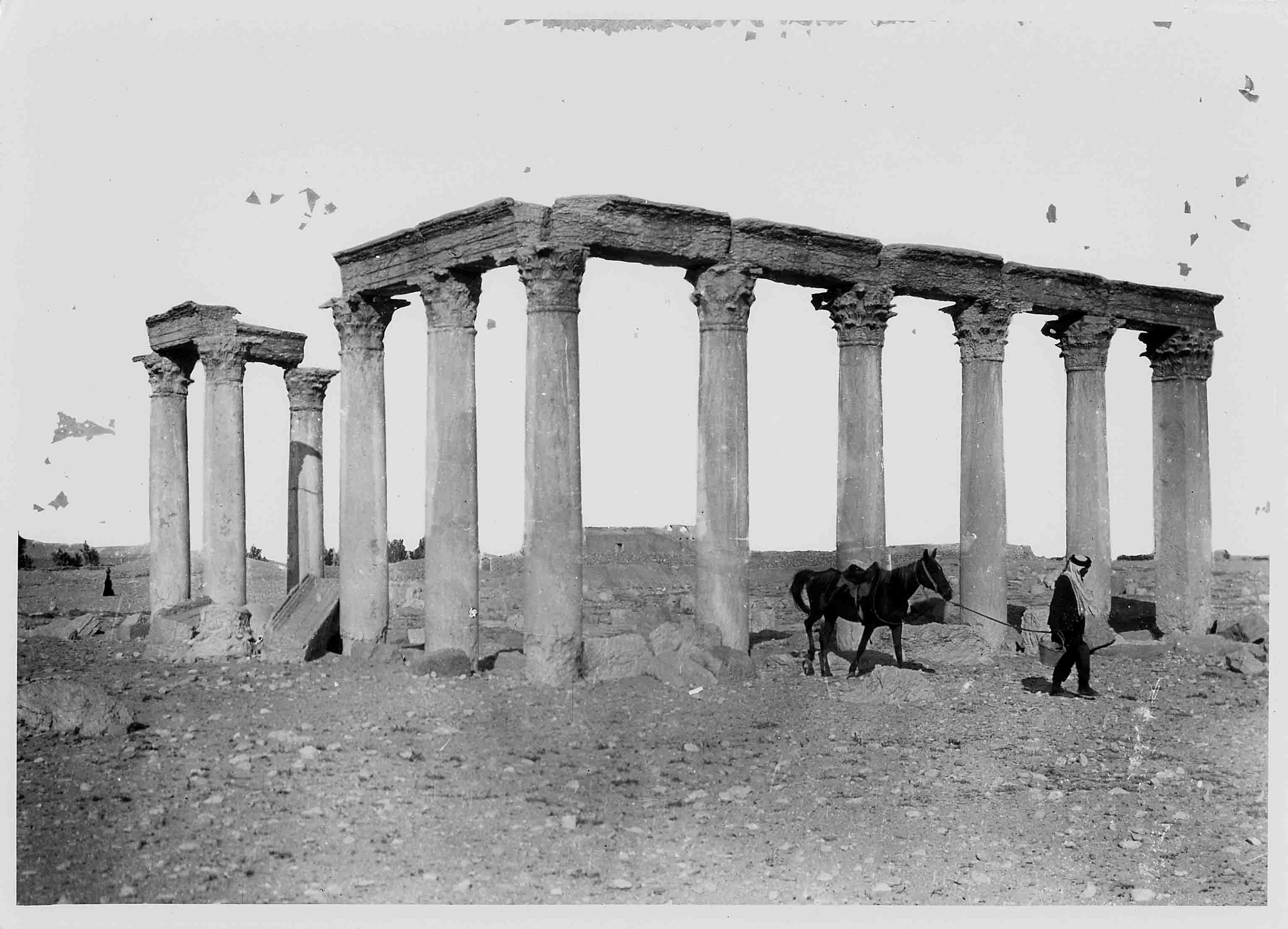 Palmira. Toni Andrè