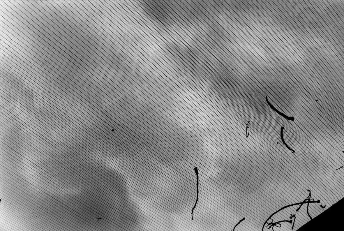1 ©Giuseppe RIpa Rarum_2012_gelatine silver print 24x30 cm ed_5 courtesy Romberg Photo