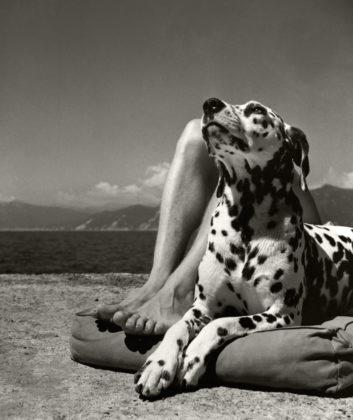 Padrone e cane Portofino 1935 Herbert List