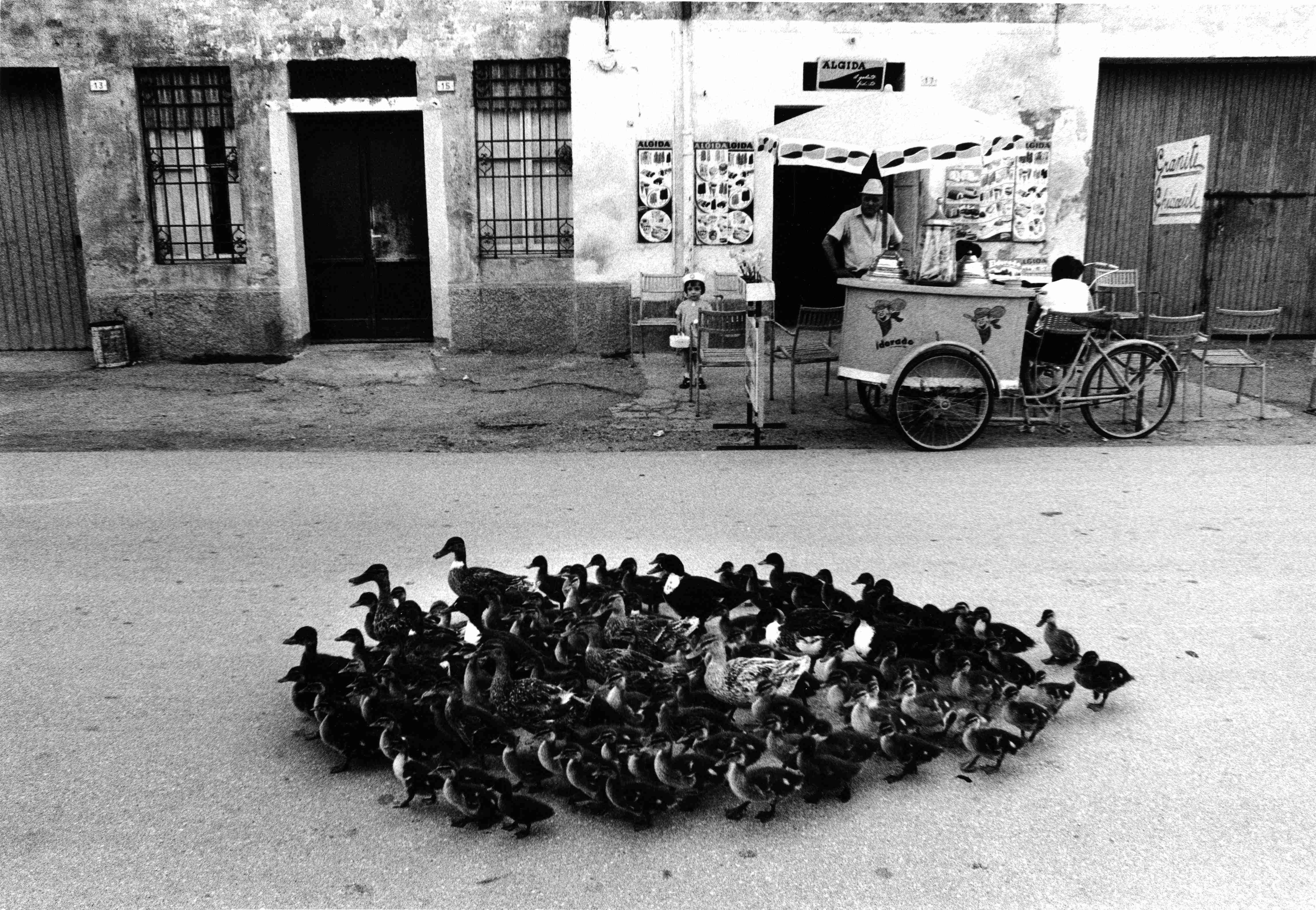 Sulla strada del Santuario di S.Maria delle Grazie, Mantova, 1973 © Toni Nicolini/ Archivio CRAF