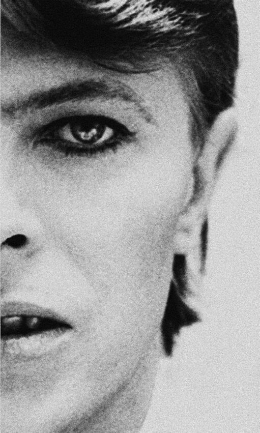 bowie europeo