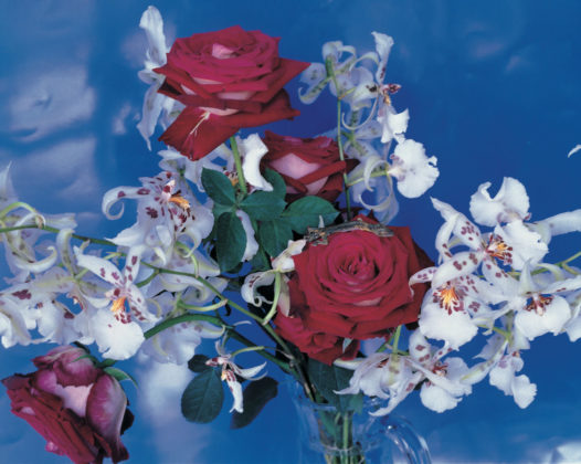 Nobuyoshi Araki Fotografia dalla serie Flowers cibachrome 49 x 59 cm © l'artista