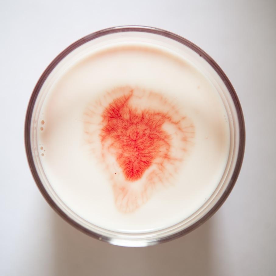 Silvia Bigi, Il sangue e il latte, 2017