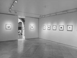 Francesca Woodman Italian Works mostra Victoria Miro venezia