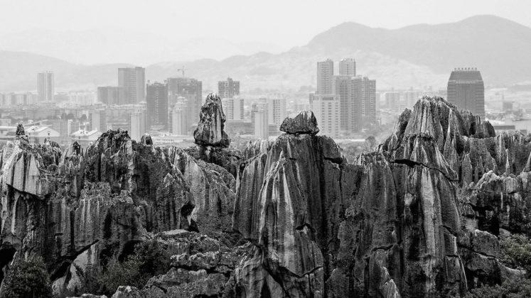 finalisti sony world photography awards 2019