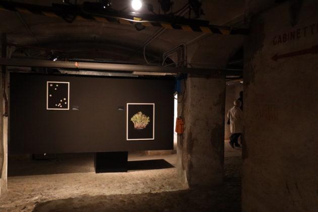 fotografia europea reggio emilia 2019
