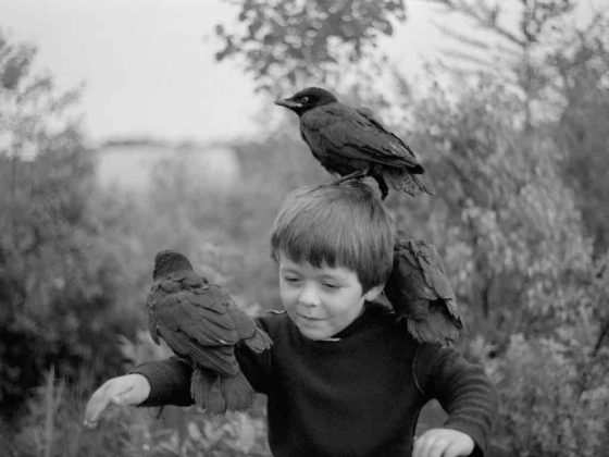 arles photographie 2019 Guillaume Simoneau foto bambino con uccelli neri