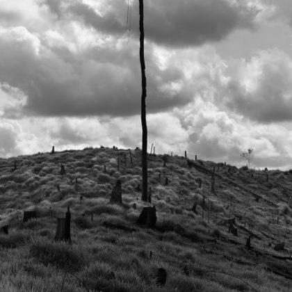 arles photographie 2019 paesaggio in bianco e nero Ludovic Carème