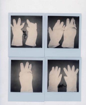 Mostra Nobuyoshi Araki mostra Siena