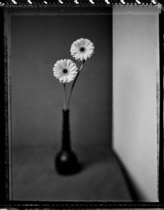 maestri della fotografia mostra valeria bella milano Mario Ermoli