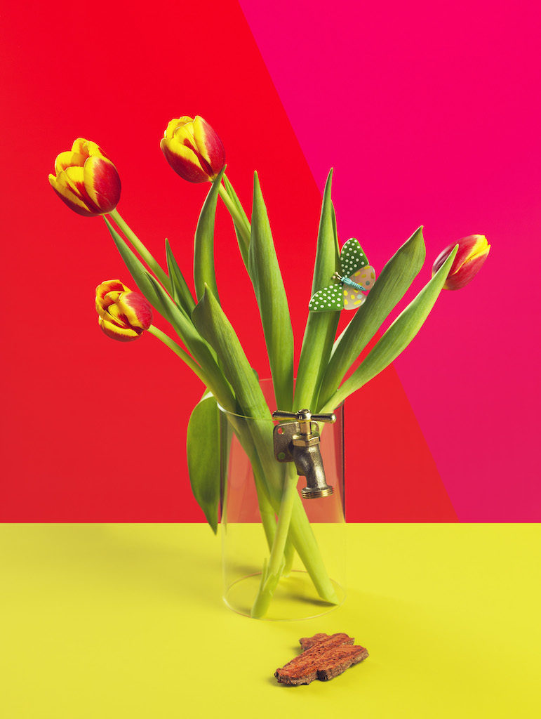 monica silva mostra Fondazione Maimeri milano foto dal titolo Flower Power