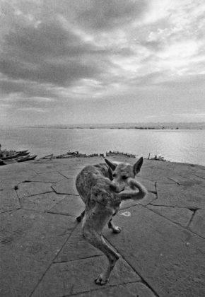 ferdinando scianna mostra venezia tre oci - varanasi 1972