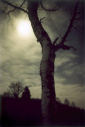 Jitka Hanzlova forest fotografia europea 2020