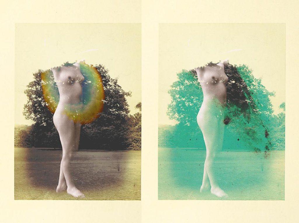 re barbus nora ciottoli collage mostra senigallia