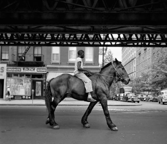 finding vivian maier documentario