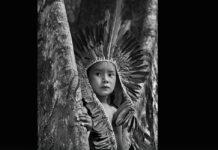 salgado appello indigeni