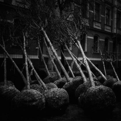 ragusa foto festival 2020 Chiara Pavolucci