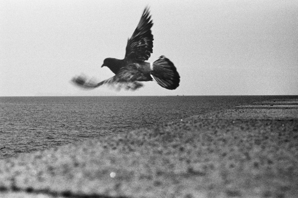 ragusa foto festival 2020 Umberto Verdoliva