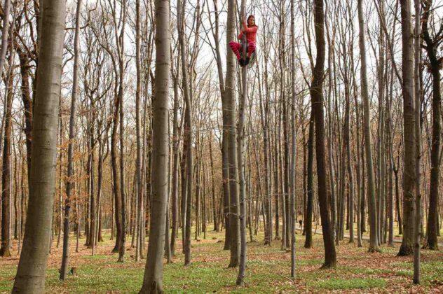Tree Time mostra Muse Trento malik