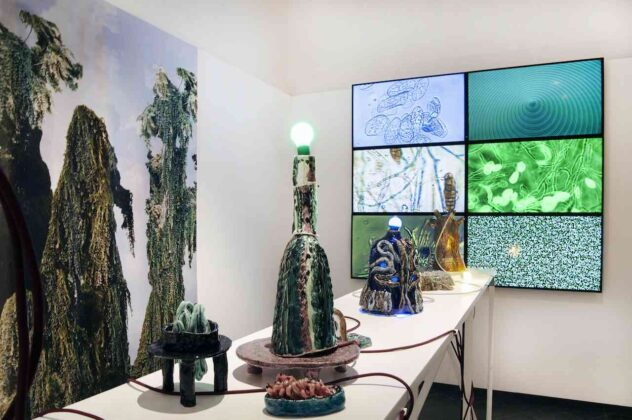 Tree Time mostra Muse Trento pirrotta