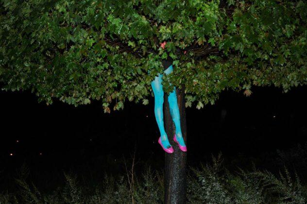 Tree Time mostra Muse di Trento cecylia malik