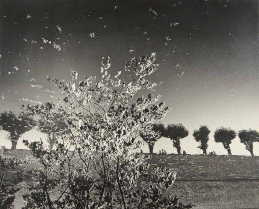 Minnamoravo di tutto mostra Leica Galerie Milano Mimmo Jodice
