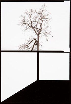 Minnamoravo di tutto mostra Leica Galerie Milano Rafael Navarro