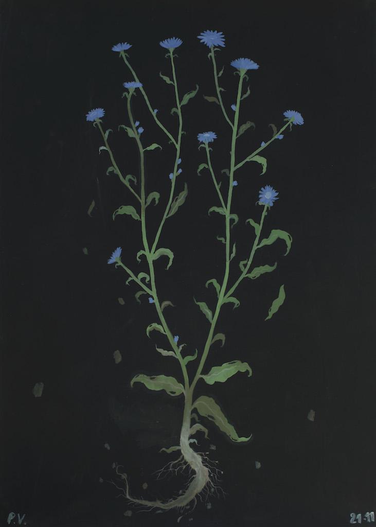Paolo Ventura mostra camera torino